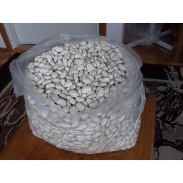 Fasola biała Jaś 5kg