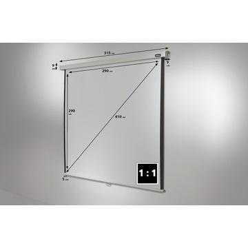 Ekran projekcyjny celexon Professional 300x300 cm