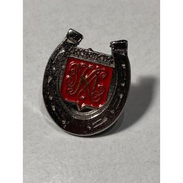 Odznaka Końskie herb przypinka pin podkowa