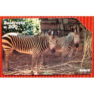 KT 1038 - Zwierzęta w ZOO Zebra