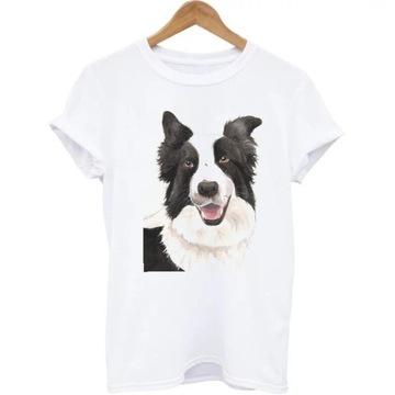 Kosuzlka bluzka t-shirt pies border collie S-XXL