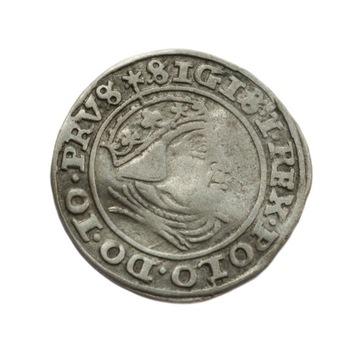 Grosz 1540 Gdańsk