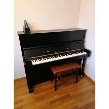Pianino Calisia bez śladów użytkowania