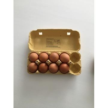Wytłaczanka na 10 jaj. W paczce 100 szt.