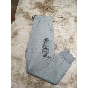 Spodnie męskie Puma L