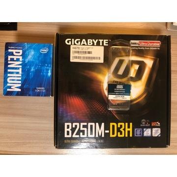 Intel G4600 / Gigabyte B250M-D3H / 8GB 2400MHz