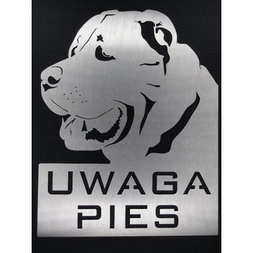 Tabliczka Alabai Środkowoazjatycki Uwaga Pies Inox