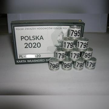 Oryginalne Obrączki PZHGP 2020 FCI 50 szt 4cyfrowe