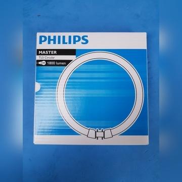 Philips TL5C 22W 840 (MASTER) Świetlówka 10szt.