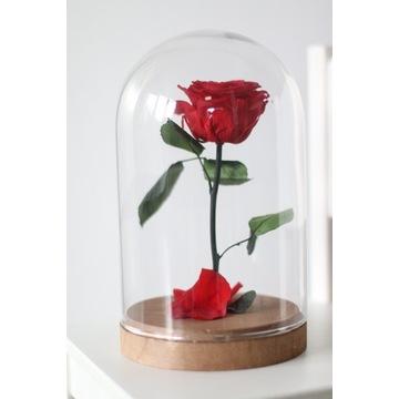 Wieczna róża w szklanej kopule Prezent Dzień MAMY