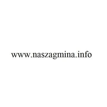 domena naszagmina.info