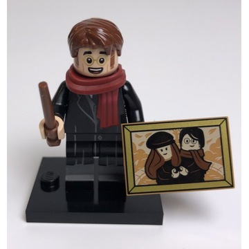 LEGO Harry Potter Minifigures 71028 James Potter
