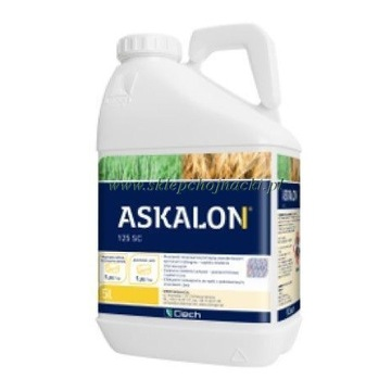 ASKALON 125 SC