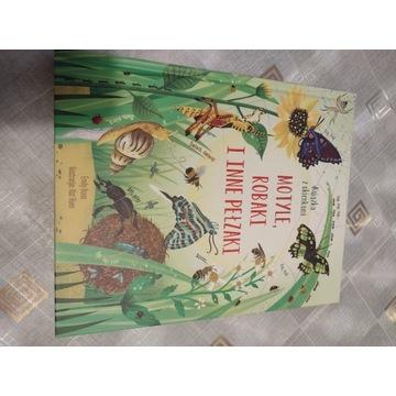 Motyle robaki i inne pełzaki książka z okienkami