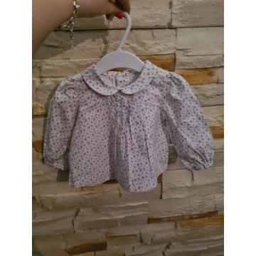 Koszula bawełniania