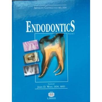 Endodontics volume I Castellucci