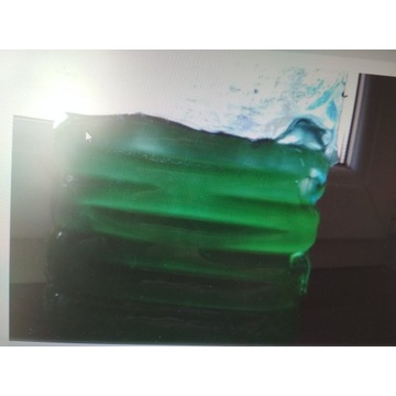 Fitoplankton 1 l