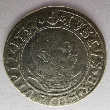 Grosz 1537 Królewiec Albrecht Hohenzollern Ładny