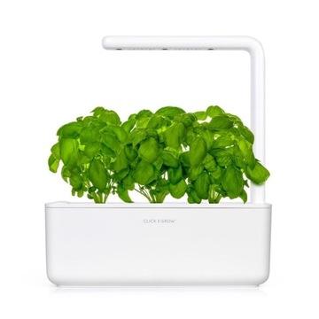 Click and Grow kapsułki bazylia 3-pak
