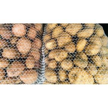 Ziemniaki bez nawozów sztucznych i chemii.