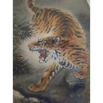 stary oryginalny obraz kakemono tygrys noc Japonia