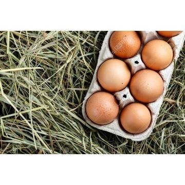 Jaja wiejskie wolnego wybiegu 10szt #lokalnesmaki
