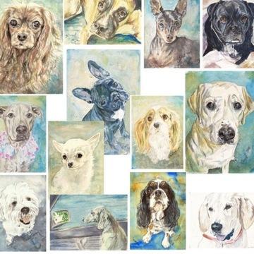 Portret psa, kot pies buldog, malarstwo akwarela