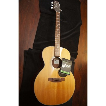 Gitara akustyczna Takamine Gseries G220