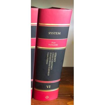 System Prawa Karnego Procesowego T.6