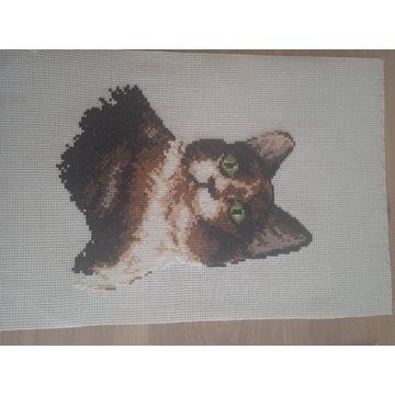 Haft krzyżykowy kot