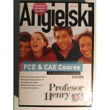 Angielski kurs przygotowujący do egzaminów FCE CAE