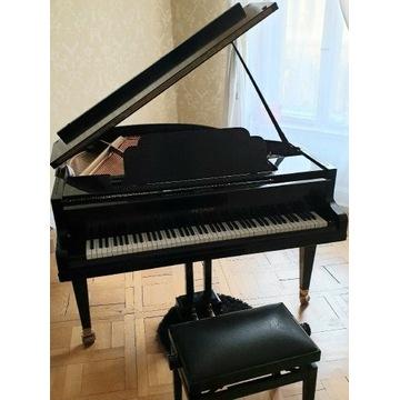 Fortepian PETROF - mały i cichy, do ćwiczeń w domu