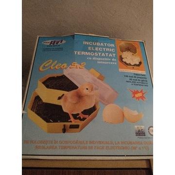Inkubator do wylęgu jaj Cleo 5 DTH