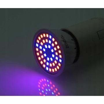 ŻARÓWKA LED GROW LIGHT DO UPRAWY ROŚLIN 5W E27