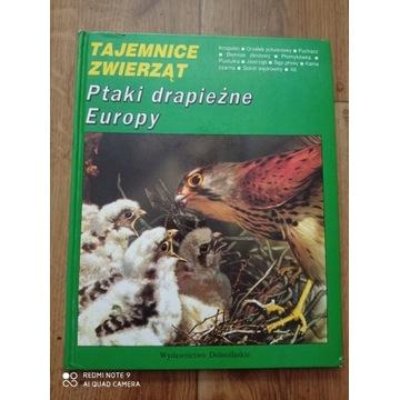 Ptaki drapieżne Europy - ornitologia