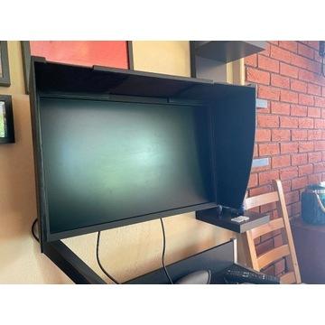Monitor Graficzny Eizo CS2420 z Kapturem GWARANCJA