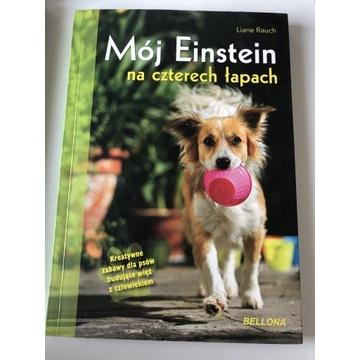 Mój Einstein na czterech łapach - zabawy dla psów