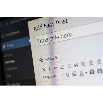 Prowadzenie bloga 12 m-cy + hosting + domena+ SSL