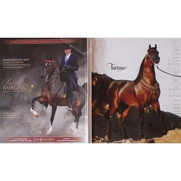 """ARABIAN HORSE TIMES"", nr 12.2018 (October, 5AA)"