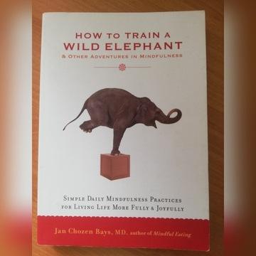 How to Train Wild Elephant / Jan Chosen Bays