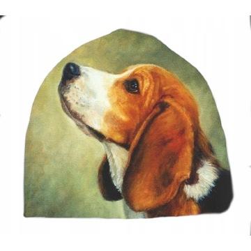 Czapka pies Beagle corgi pomeranian Różne wzory