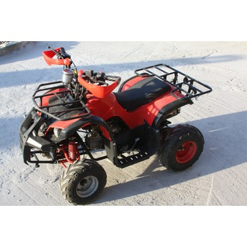 Quad ATV 110 Grizlly