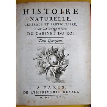 Starodruk Buffon 1767 Historia Naturalna T15 Małpy