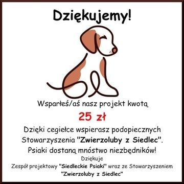 Cegiełka o wartości 25 zł