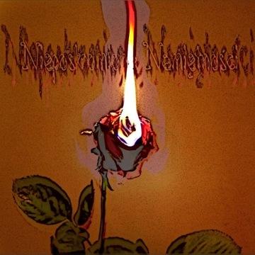 Souler - Nieposkromione Namiętności (album 2020)