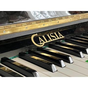 Pianino Calisia Czarne model m-105 chippendale