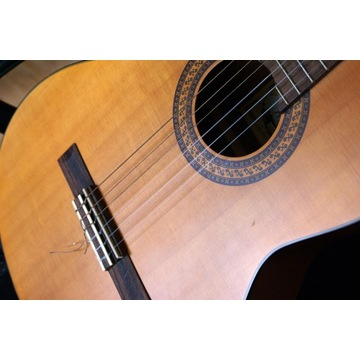 Gitara klasyczna Santos Martinez model SM50