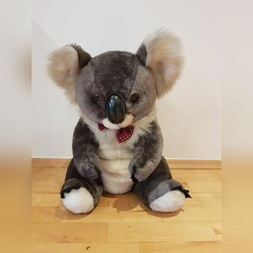 Pluszowy miś koala