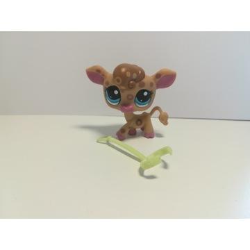 Figurki lps kolekcjonerskie Little pet shop krowa