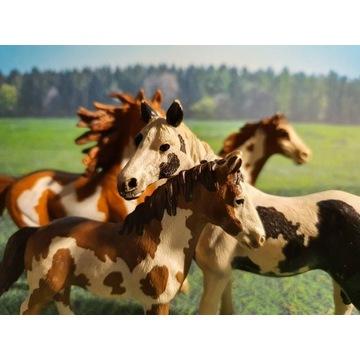 Schleich | Zestaw 4ech koni Pinto UNIKATY!!